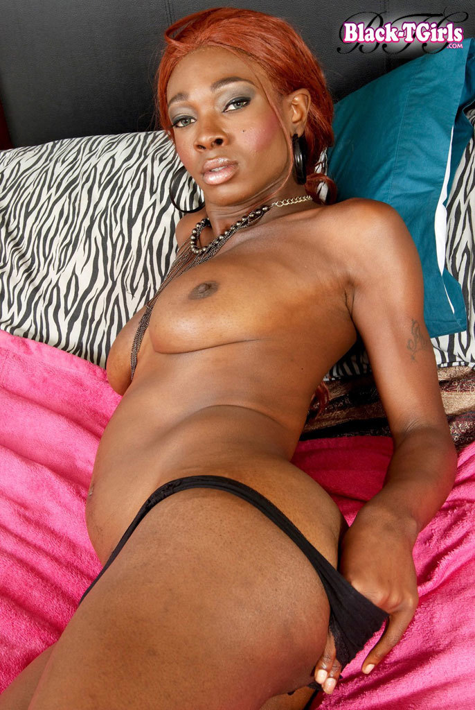 Attractive Black TGirl Stroking!