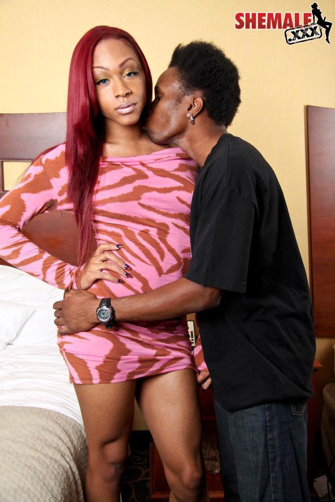 Attractive Ebony Tgirl Smashed