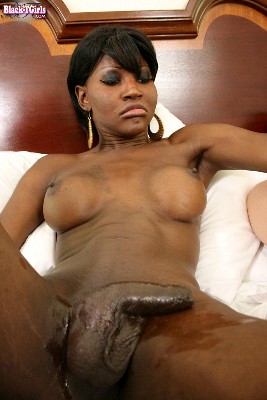 Black Ladyboys Set 807