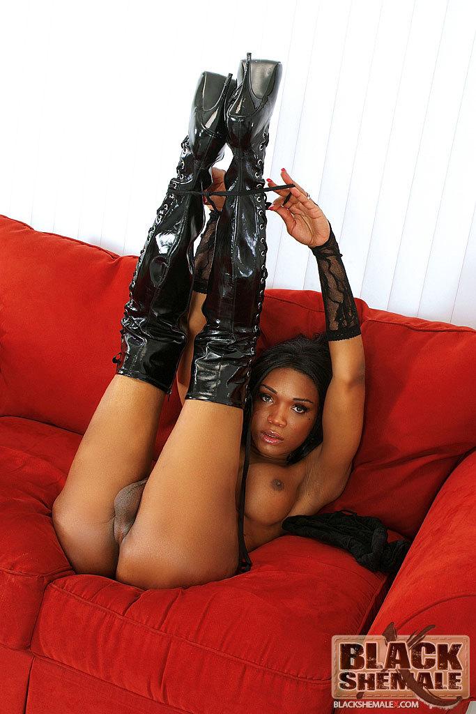 Black T-Girl In Seductive See Through Panties