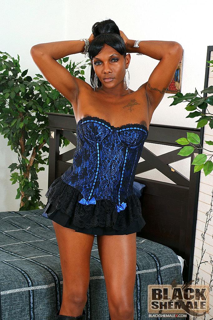 Black T-Girl Stroke's Her Tool
