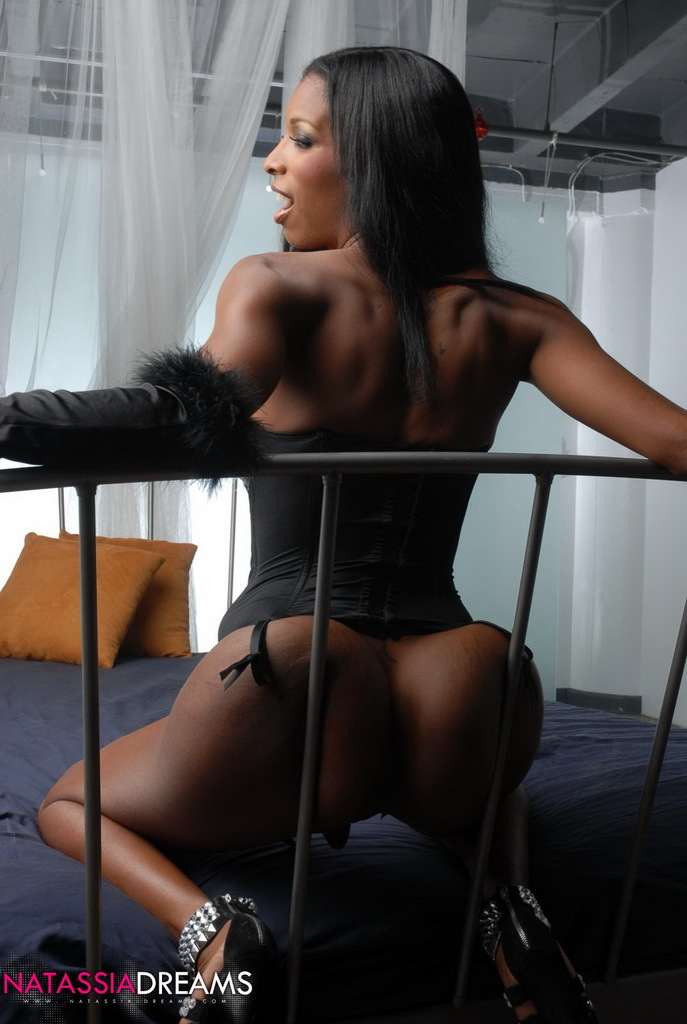 Black Transexual Shows Us Her Massive Tits And Ass-Hole
