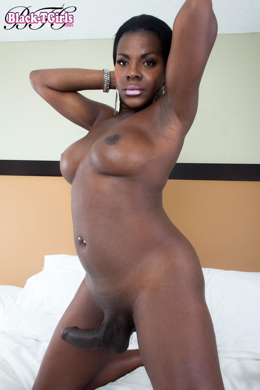 Black Transexuals Set 1054