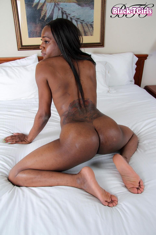 Black Transexuals Set 1069