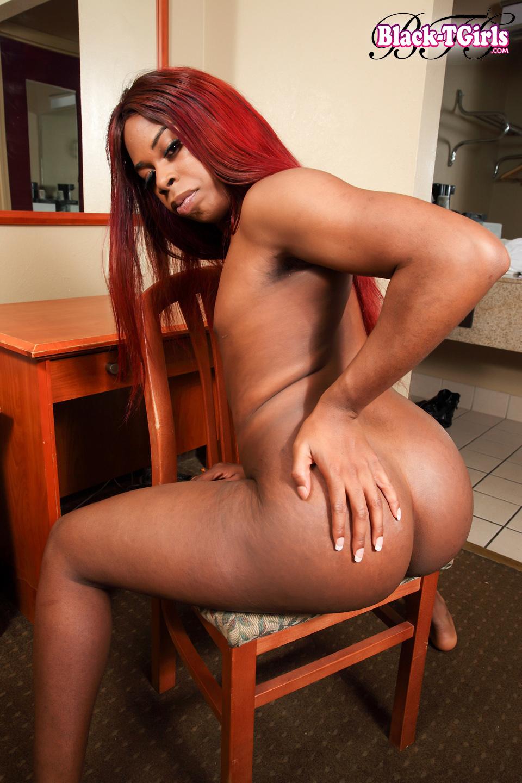 Black Transexuals Set 2216