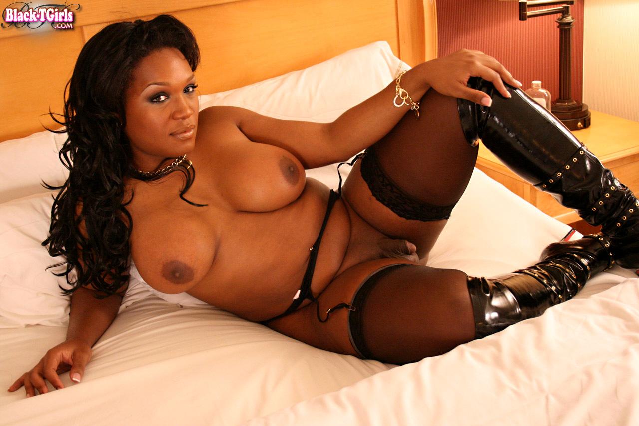 Black Transexuals Set 804