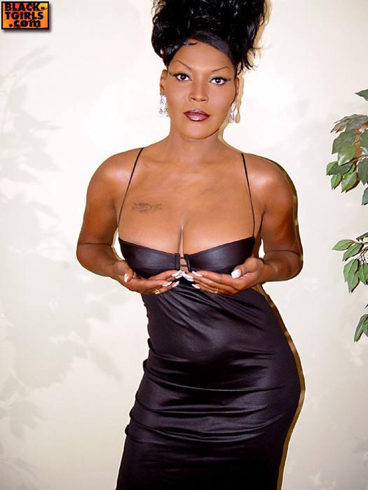 Black Transexuals Set 857