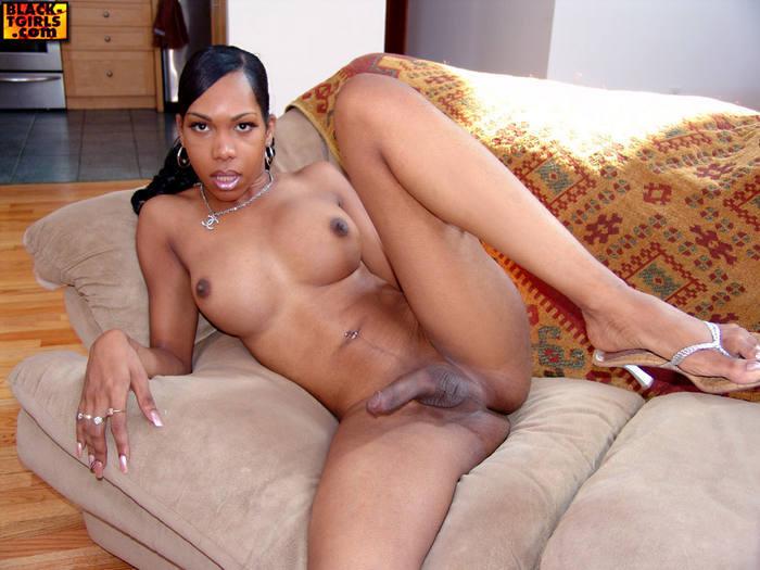 Black Transexuals Set 859