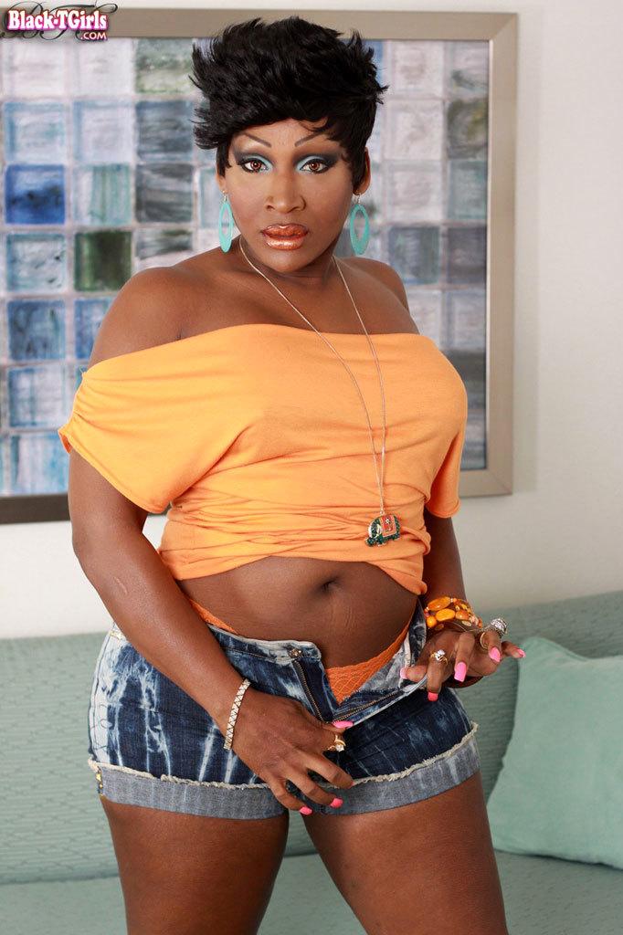Curvy Natural Looking Black TGirl