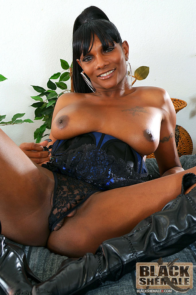 Fine Black Tranny Bares Her Penis