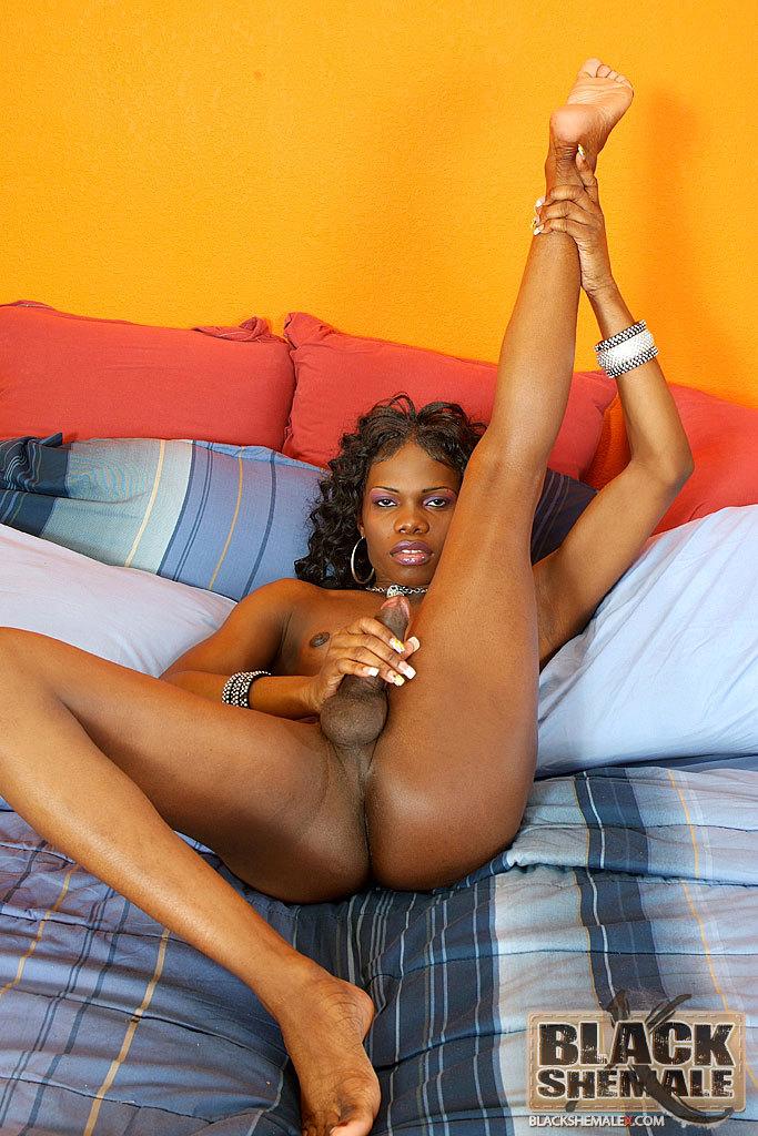 Huge Penis Black T-Girl Brooke