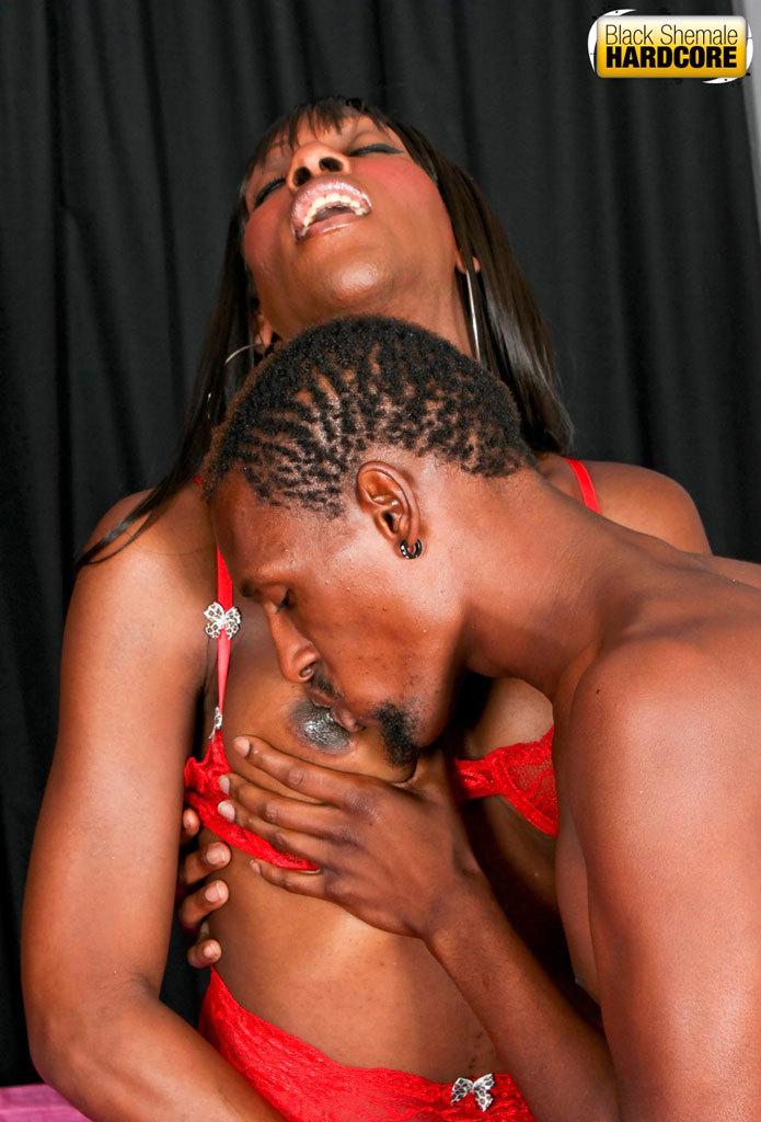 Inviting Black Tgirl Gets Banged!