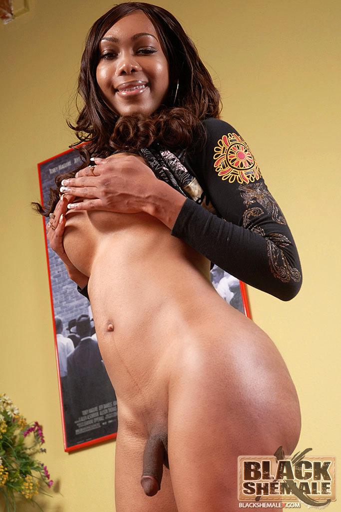 Massive Titty Hung Black TGirl Rub's Her Dick